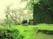कम बजट में बनाएं कर्नाला का प्लान, इन खूबसूरत स्थलों का लें आनंद