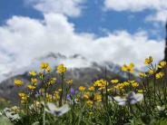 फूलों की घाटी में ले ट्रेकिंग का मजा