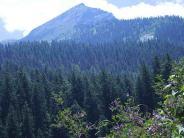 छुट्टियों को बनाना है यादगार..तो जायें हिमाचल प्रदेश की इन खूबसूरत जगहों पर