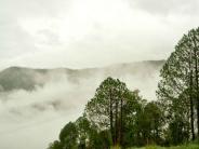 प्रकृति प्रेमियों के लिए स्वर्ग से कम नहीं है उत्तराखंड स्थित  सैलसौर