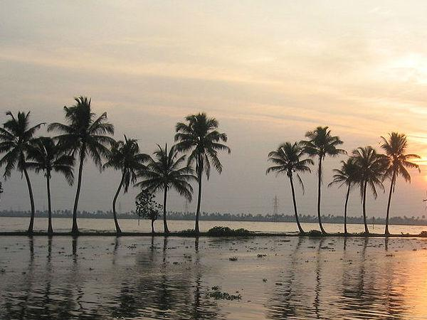 केरल के 5 सबसे अच्छे पर्यटक स्थल