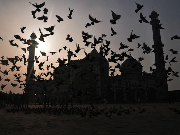 स्मारकीय भारत: दिल्ली के जामा मस्जिद से जुड़ी 7 दिलचस्प बातें!