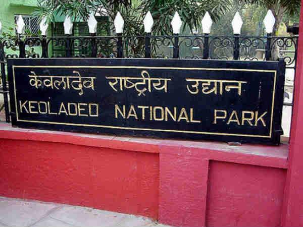 keoladeo-national-park travel guide