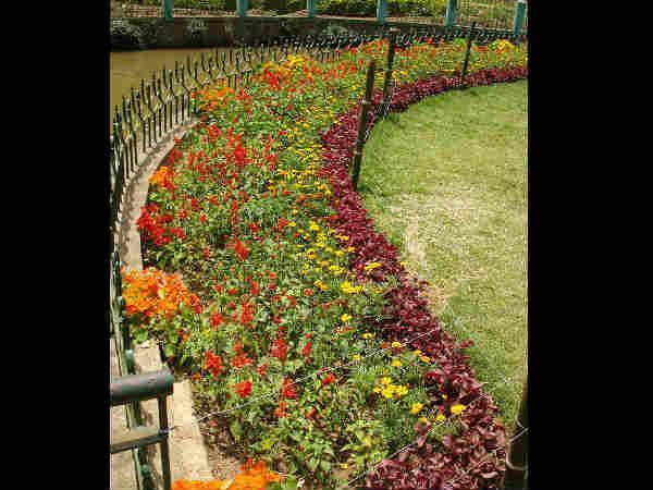 ये हैं भारत के खूबसूरत और आलिशान बगीचे