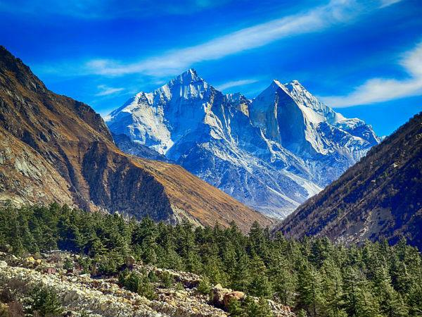 Gangotri National Park