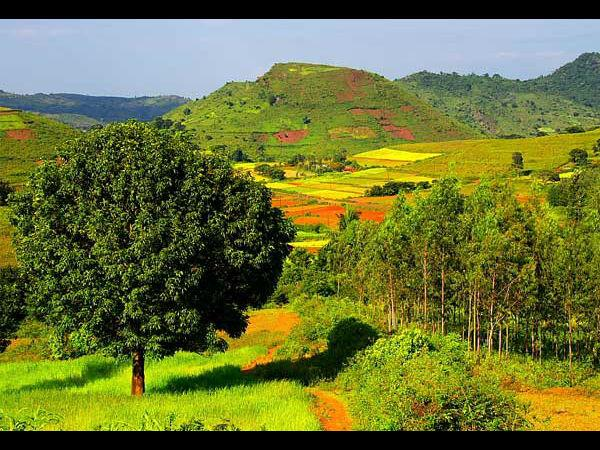 Araku-valley