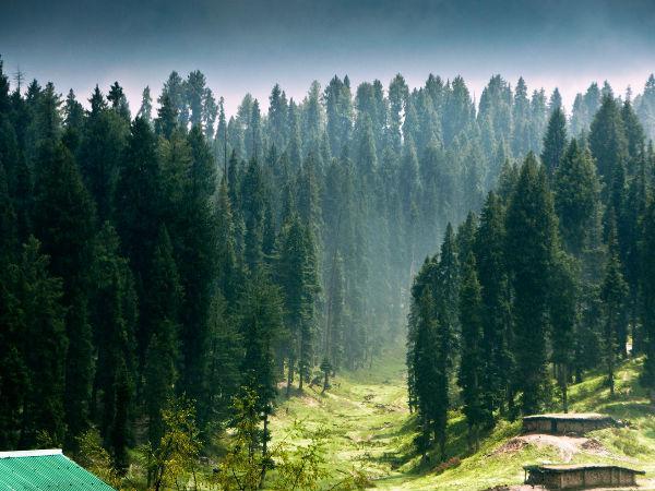 जम्मू व कश्मीर