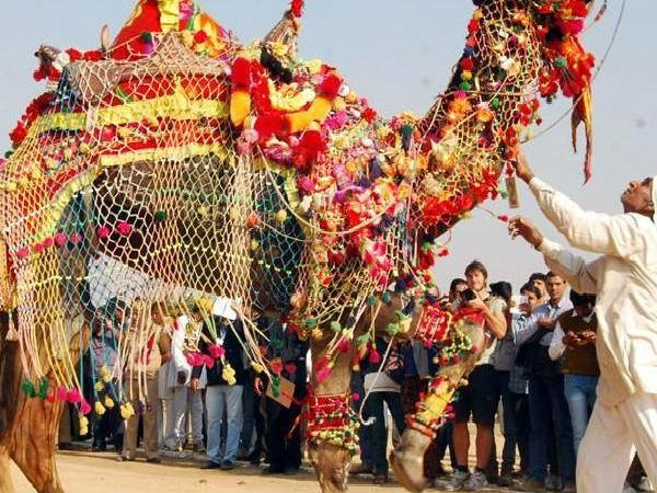 Camel Fair in Bikaner