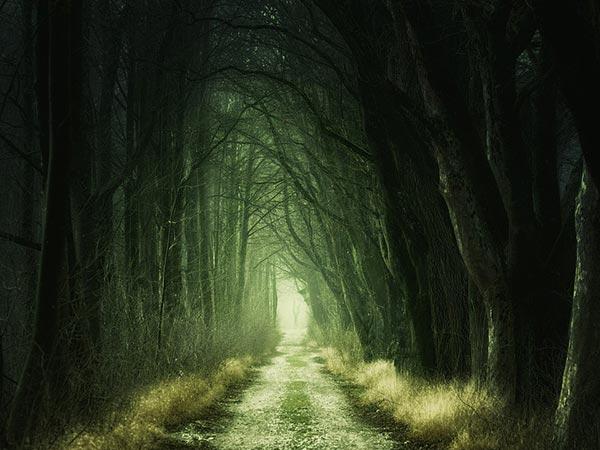 रहस्य : दुर्गापुर की वो सड़कें जहां रात में इंसान नहीं, चलते हैं शैतान