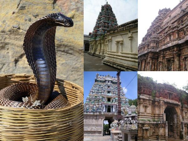 नागों के बीच विराजमान भगवान शिव का अद्भुत मंदिर, जानिए इसकी खासियत