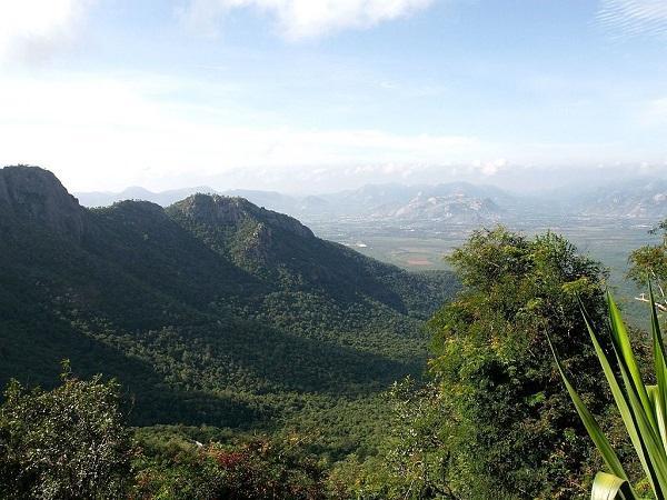 कर्नाटक की बीआर हिल्स में घूमने लायक सबसे खास स्थान