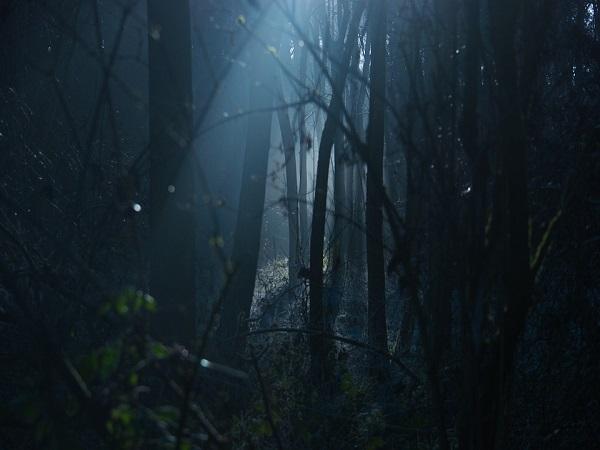 भूत-प्रेतों को सच में देखना है तो आएं इंदौर के इन स्थानों पर