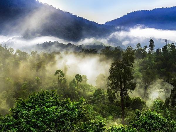 हिमाचल प्रदेश : गर्मियों में ठंड का एहसास चाहिए तो पहुंचे कुफरी