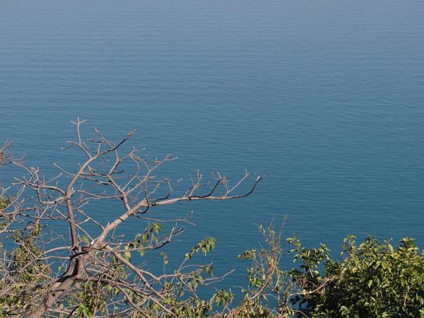 गोबिंद सागर झील