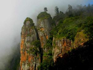 Bangalore To Kodaikanal Road Trip For Adventurous Souls