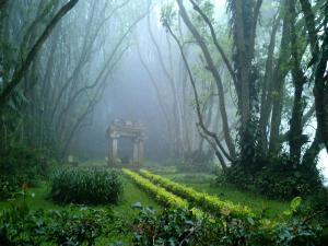 The Tourist Resort Near Bangalore