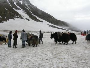 Places Visit Kullu Himachal Pradesh