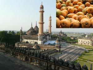 Places Visit During This Mango Season