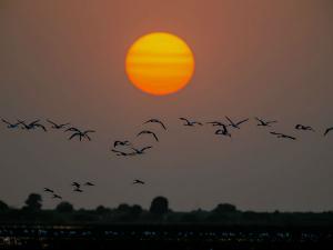 Top Honeymoon Destinations In Gujarat Hindi
