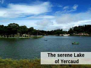 Rejoiceful Travel Trip From Bangalore Yercaud