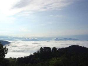 Solan Travel Guide Himachal Pradesh