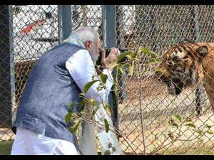 Nandan Van Zoo Safari Chhattisgarh