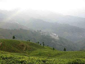 Monsoon Honeymoon Destinations India Hindi