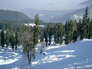 Exclusive Things You Should Strike Off From Your Bucket List In Gulmarg Kashmir Hindi
