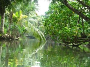 Munroe Island Hidden Venice Of India Hindi