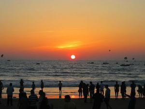 The Best Things Do Free Goa Hindi