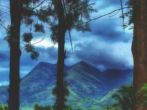 All About The Beautiful Town Kalpetta Hindi