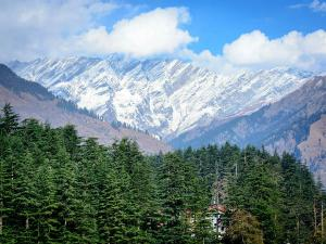 Why One Must Visit Rajgarh Himachal Pradesh