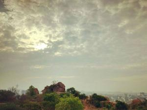 The Soothing Turahalli Forests The Last Standing Forest Bangalore Hindi