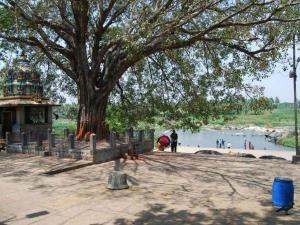 Visit The Famous Temple Nimishamba Srirangapatna Hindi