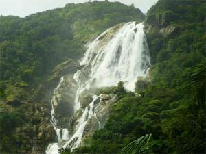 Exhilarating Hike Dudhsagar Waterfalls Hindi