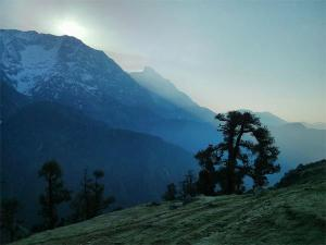 Ultimate Road Trips From Chandigarh Hindi