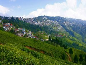 The Hidden Getaway Mungpoo From Darjeeling Hindi