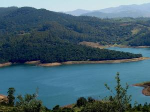 Bangalore Ooty Journey Into The Paradise Hindi