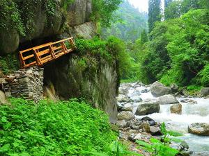 From Delhi The Pristine Lands Tirthan Valley Hindi