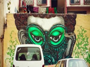 Spotting Graffiti Art The Streets Delhi Hindi