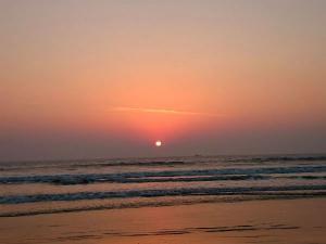 The Seashore Velas From Mumbai Hindi