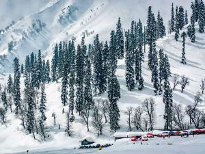 Attend The Valley Weekend At Kashmir This Winter Hindi