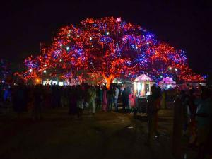 Why Cochin Carnival Is The Place Be On New Year S Eve Hindi
