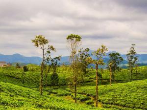 Top 5 States Explore India