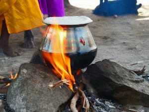 Best Places Visit During Pongal Hindi