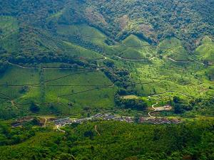 A Weekend Trip From Chennai To The Breathtaking Beauty Of Munnar Hindi