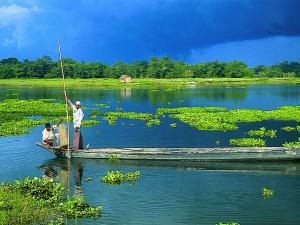Top Ten Things Assam Is Famous For