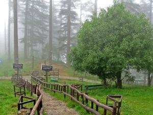 Cheap Holidays 5 Best Places Visit India Under Rs 5000 Hindi
