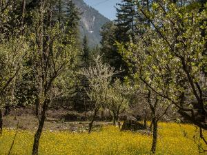 Himalayan Villages Parvati Valley Himachal Pradesh Hindi