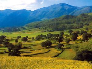 Topmost 5 Reasons Visit Araku Valley Andhra Pradesh Hindi